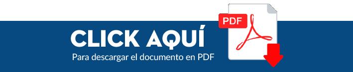 descargar-pdf-07